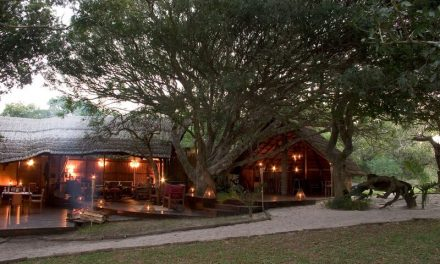 Kosi Forest Lodge