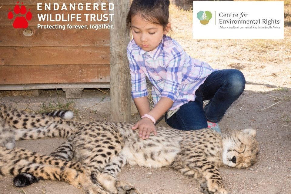 New report finds inadequate protection for the well-being of South African wildlife