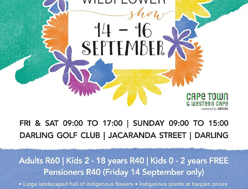 The Darling Wildflower Show