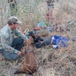 Conservation Canine Annie nabs three poachers in one day!