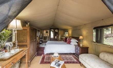 Win 2 Nights at Mount Camdeboo