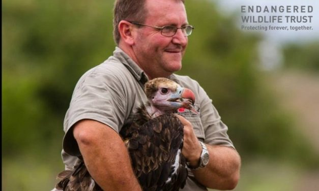 Endangered Wildlife Trust Wins Prestigious Award for Endangered Species Conservation