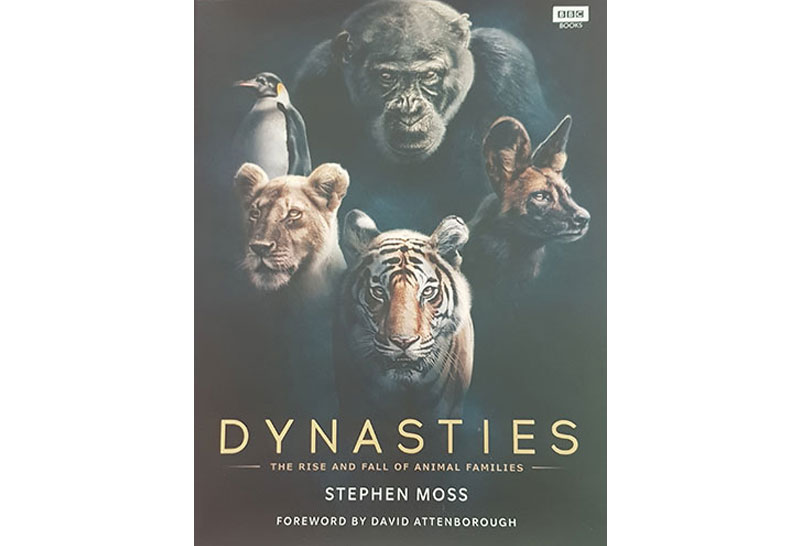 Win a copy of Stephen Moss's Dynasties