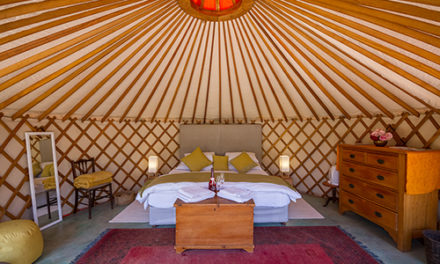 Southern Yurts brings a unique experience to the Overberg