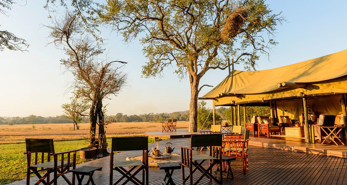Glamping – Plains Camp – home of Rhino Walking Safaris