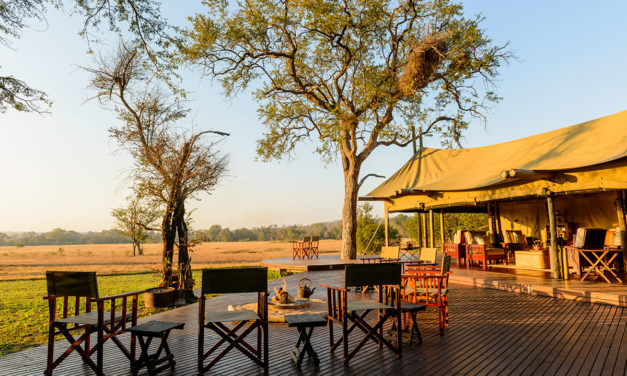 Glamping – Plains Camp – home of Rhino Walking Safaris