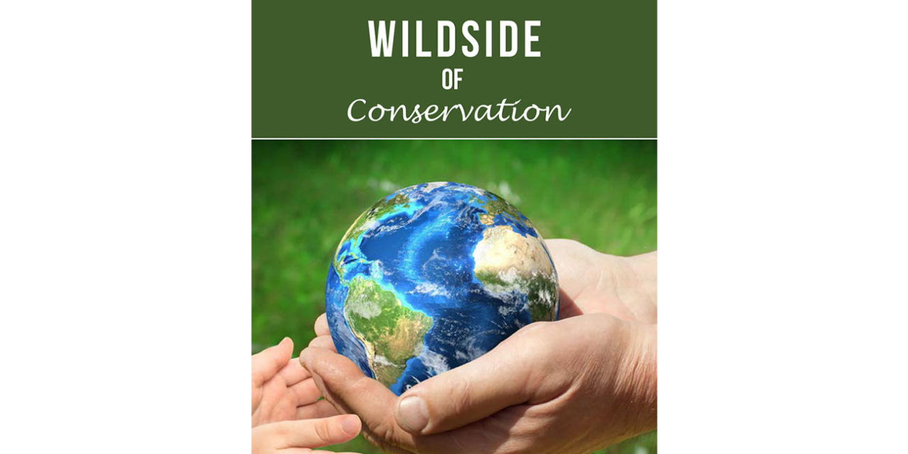 Wildside of Conservation Issue 2
