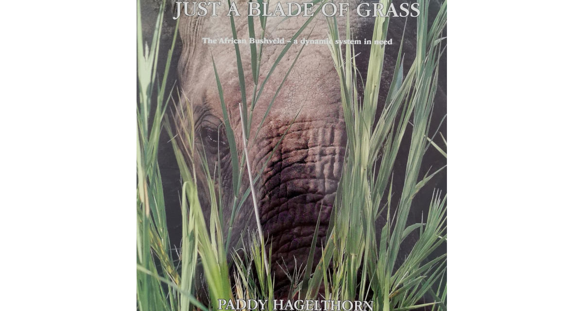 WIN a copy of : Just a Blade of Grass by Paddy Hagelthorn and Molly Buchanan