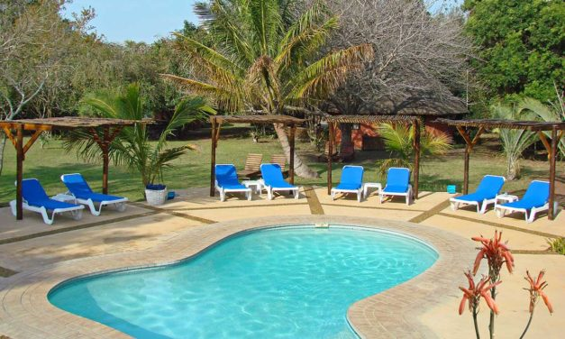 Two nights incl. bed and breakfast for two people sharing at Emdoneni Lodge, with a Zululand Cat conservation tour valued at R10000.