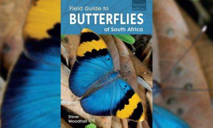 Win a copy of Steve Woodhall's FIELD GUIDE TO BUTTERFLIES