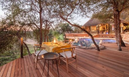 What Makes a Luxury Big 5 Safari the Perfect Romantic Staycation