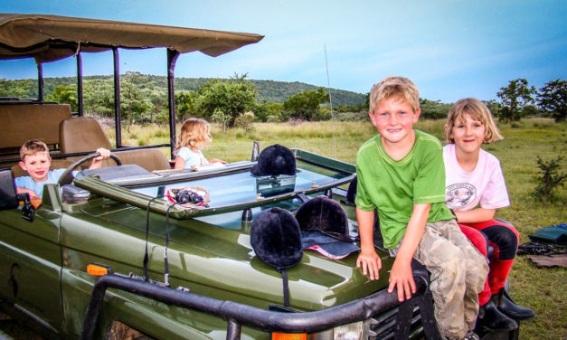 Safari Activities Your Kids Will Love