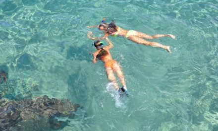 Win A Discover Snorkeling Safari for a family of four from Tidal Tao